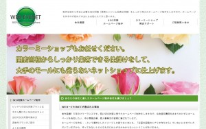 WEB-EYENET