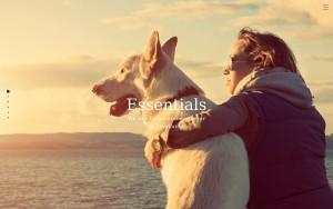 株式会社 Essentials
