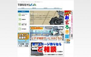 株式会社トルシス