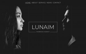 株式会社Lunaim