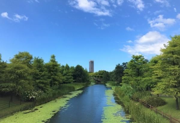 静岡県浜松市のおすすめホームページ制作会社