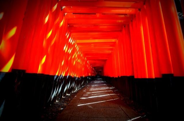 京都でECサイト構築に強い優良制作会社をプロが厳選!