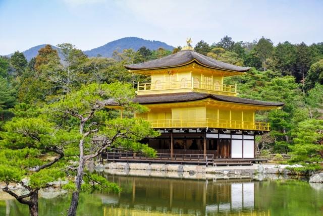 京都府のおすすめSEO対策会社